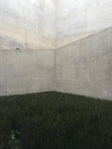 concrete...... (for hubert and gabi i hope)